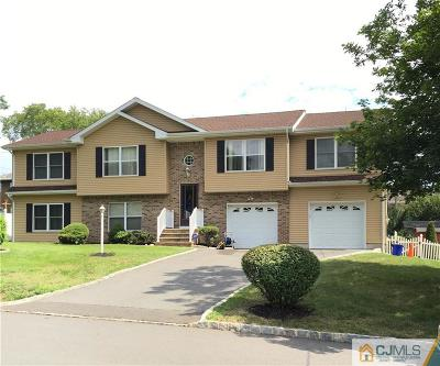 Piscataway Single Family Home For Sale: 5 Highland Avenue