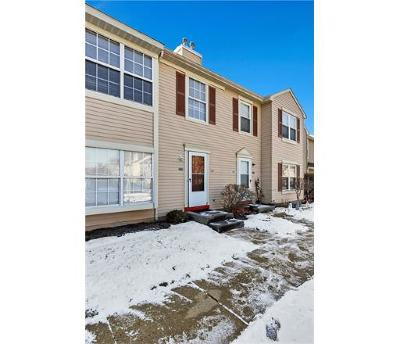 Somerset County Condo/Townhouse For Sale: 164 McNair Court