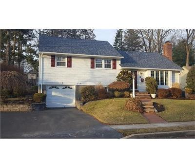 Metuchen Single Family Home For Sale: 97 Mason Drive