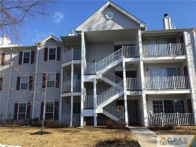 Somerset County Condo/Townhouse For Sale: 73 Amethyst Way #1219