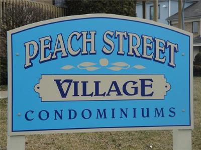Avenel Condo/Townhouse For Sale: 412 Peach Street #412