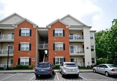 South Plainfield Condo/Townhouse For Sale: 228 Lucy Court #228