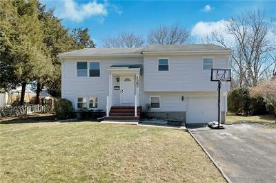 Piscataway Single Family Home For Sale: 1363 Division Avenue