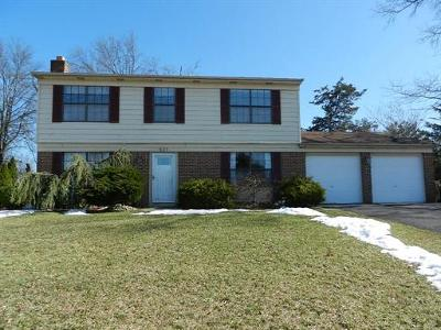 Somerset County Single Family Home For Sale: 527 New Brunswick Road