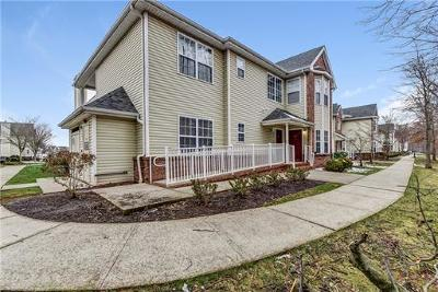 Piscataway Condo/Townhouse For Sale: 223 Pinelli Drive
