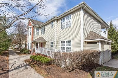 Piscataway Condo/Townhouse For Sale: 245 Pinelli Drive #245