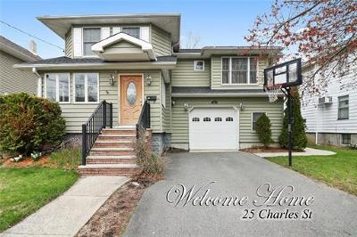 Metuchen Single Family Home For Sale: 25 Charles Street