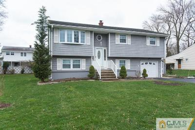 Piscataway Single Family Home For Sale: 407 Dryden Road
