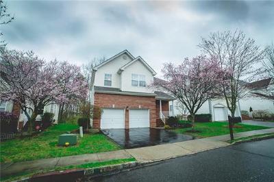 Somerset County Single Family Home For Sale: 17 Hudnut Lane