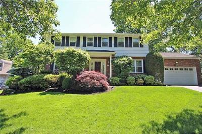 Metuchen Single Family Home For Sale: 306 E Chestnut Avenue