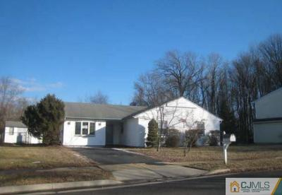 Piscataway Single Family Home For Sale: 11 Apple Way