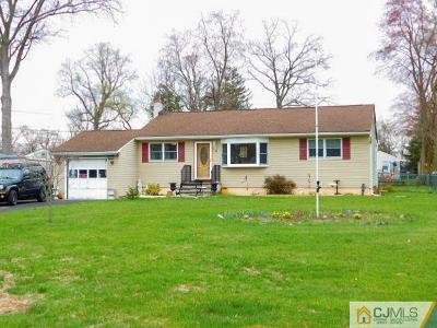 Piscataway Single Family Home For Sale: 21 Stanton Avenue