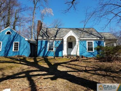 East Brunswick Single Family Home For Sale: 347 Summerhill Road