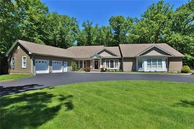South Plainfield Single Family Home For Sale: 275 South Plainfield Avenue
