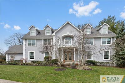 Metuchen Single Family Home For Sale: 553 Wakefield Drive