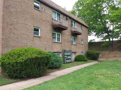 Edison Condo/Townhouse For Sale: 226 College Drive