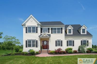 Somerset County Single Family Home For Sale: 1 French Drive