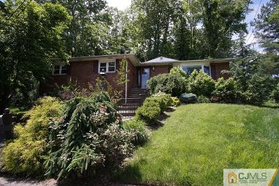Metuchen Single Family Home For Sale: 5 Ivy Court