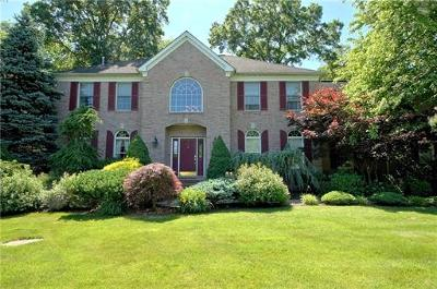Single Family Home For Sale: 8 Regal Court