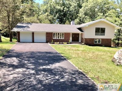 Somerset County Single Family Home For Sale: 738 W Foothill Road