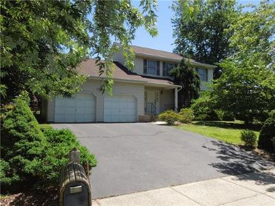 South Plainfield Single Family Home For Sale: 1409 Durham Avenue