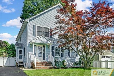 Edison Single Family Home For Sale: 48 Second Street