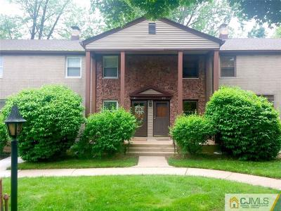 Metuchen Condo/Townhouse For Sale: 191 Newman Street #207B