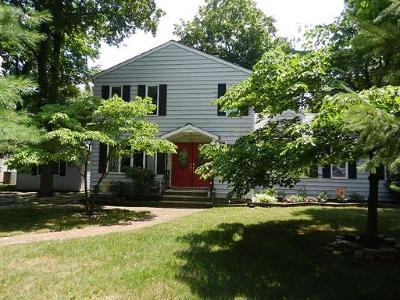 Somerset County Single Family Home For Sale: 23 Park Lane
