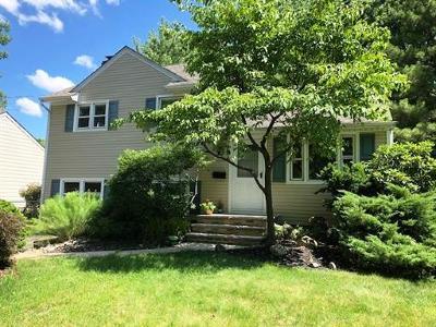 Edison Single Family Home For Sale: 163 Whitman Avenue