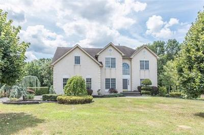 Single Family Home For Sale: 9 Fox Hunt Drive