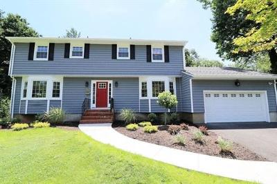 Metuchen Single Family Home For Sale: 143 Christol Street