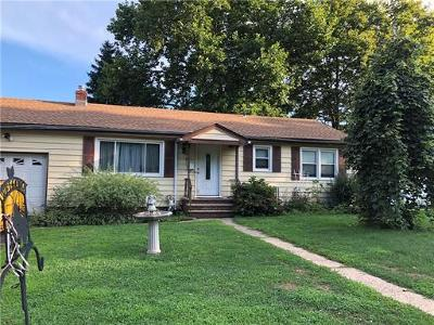 South Plainfield Single Family Home For Sale: 1249 Meister Street