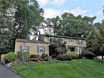 East Brunswick Single Family Home For Sale: 13 Van Wickle Road