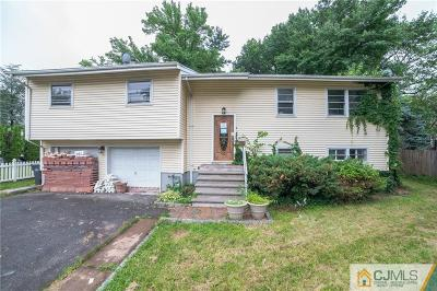 Metuchen Single Family Home For Sale: 197 Middlesex Avenue