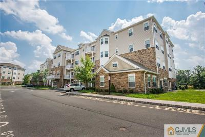 Piscataway Condo/Townhouse For Sale: 245 Luca Drive #245