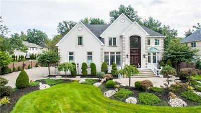 Edison Single Family Home For Sale: 17 Richard Road