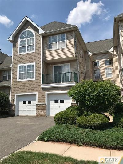 Somerset County Condo/Townhouse For Sale: 203 Tomahawk Court