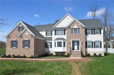 Somerset County Single Family Home For Sale: 4 Petrik Farm Road