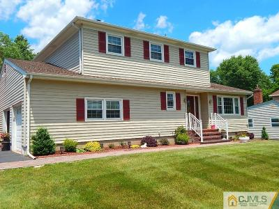Somerset County Single Family Home For Sale: 91 Ivy Lane
