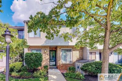 Metuchen Condo/Townhouse For Sale: 43 Irongate . #43