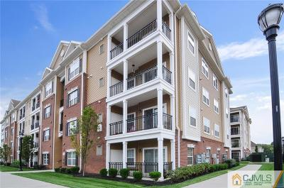 South Plainfield Condo/Townhouse For Sale: 437 Micali Way #437