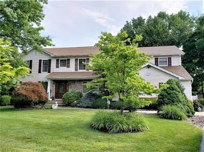 East Brunswick Single Family Home For Sale: 17 Jason Drive