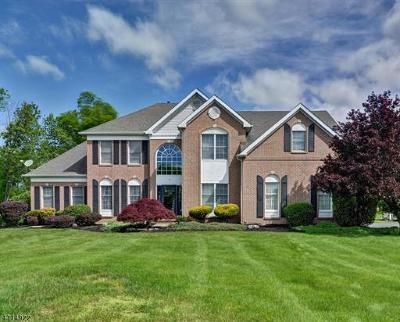 Somerset County Single Family Home For Sale: 77 Southfield Drive