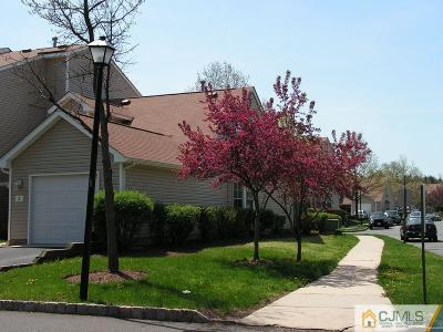Somerset County Condo/Townhouse For Sale: 2 Boyard Court