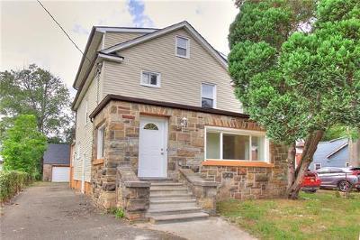 Piscataway Single Family Home For Sale: 392 Evona Avenue