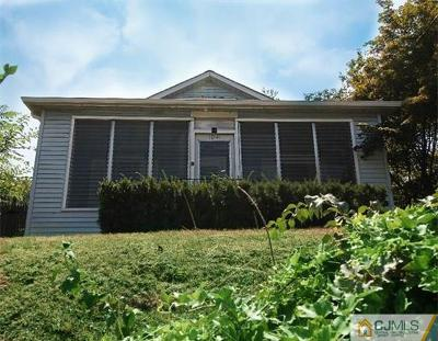 South Plainfield Single Family Home For Sale: 1041 New Market Avenue