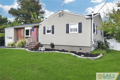 Piscataway Single Family Home For Sale: 12 Seymour Terrace