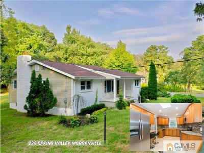 Single Family Home For Sale: 236 Spring Valley Road