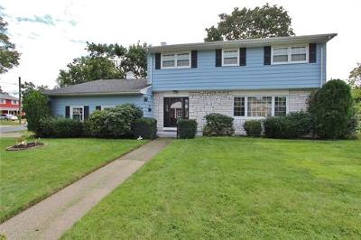 South Plainfield Single Family Home For Sale: 153 Risoli Terrace