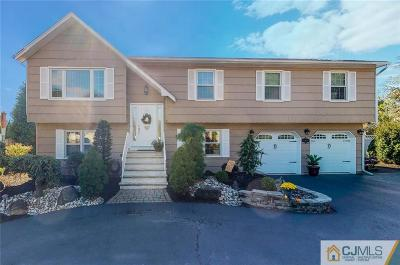 South Plainfield Single Family Home For Sale: 148 Day Street